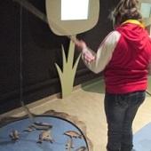 Zemědělské muzeum - chytání ryb