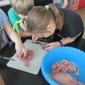 Příprava oběda - kontrola velikosti připravených kostiček :-)