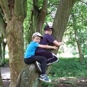 Týmově lezeme na stromy