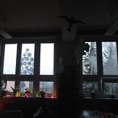 Výzdoba oken